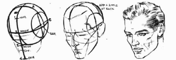 Как рисовать поэтапно голову человека