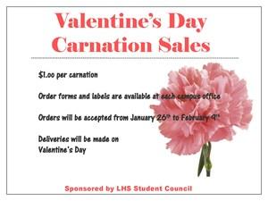 Carnation Flyer 2018.jpg