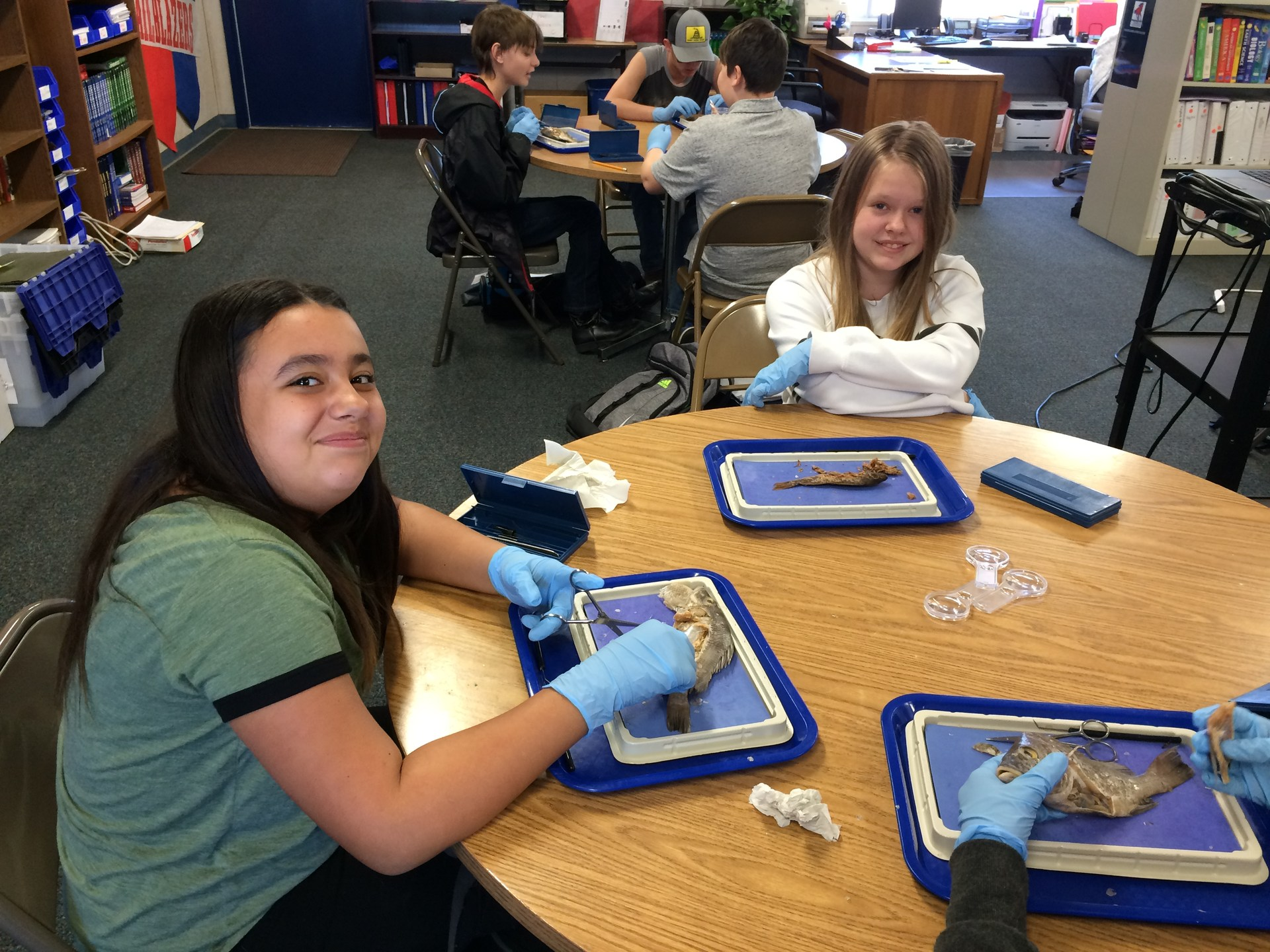 Students doing dissection.