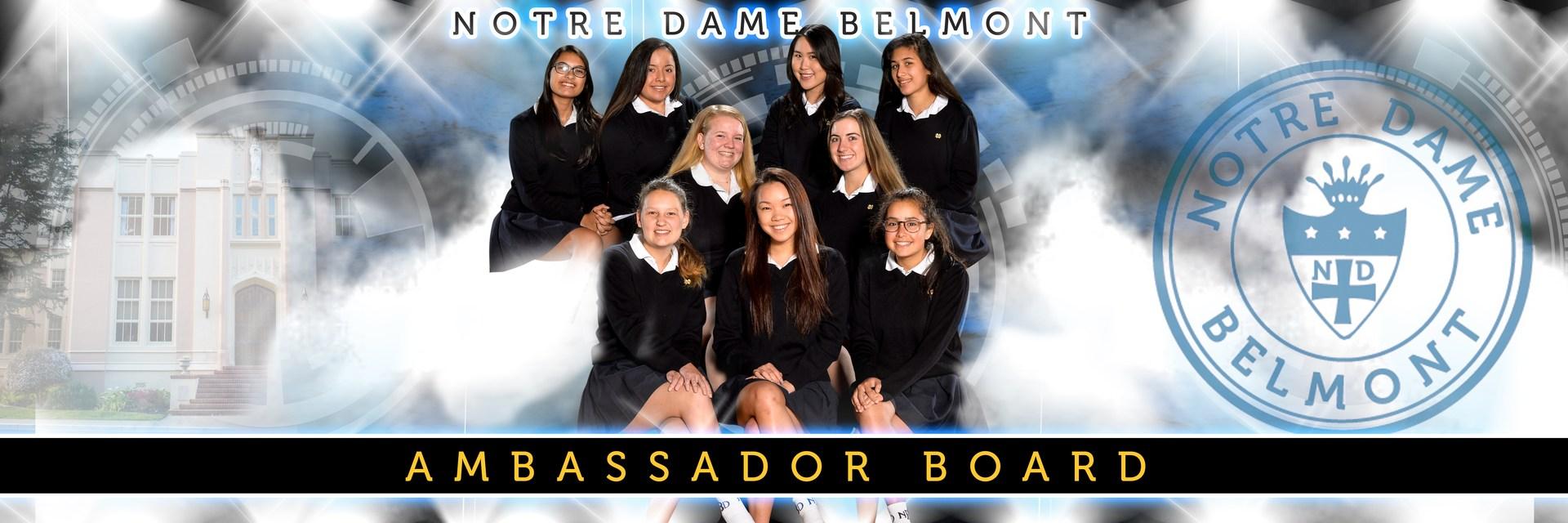 Ambassador Board