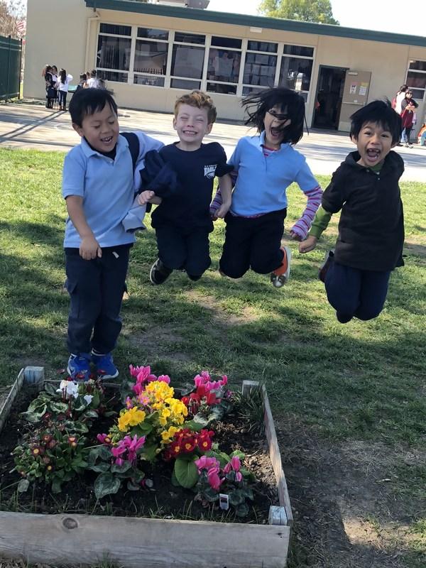 Kindergarteners jumping up in air