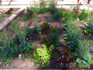 GardenFrontPage.jpg
