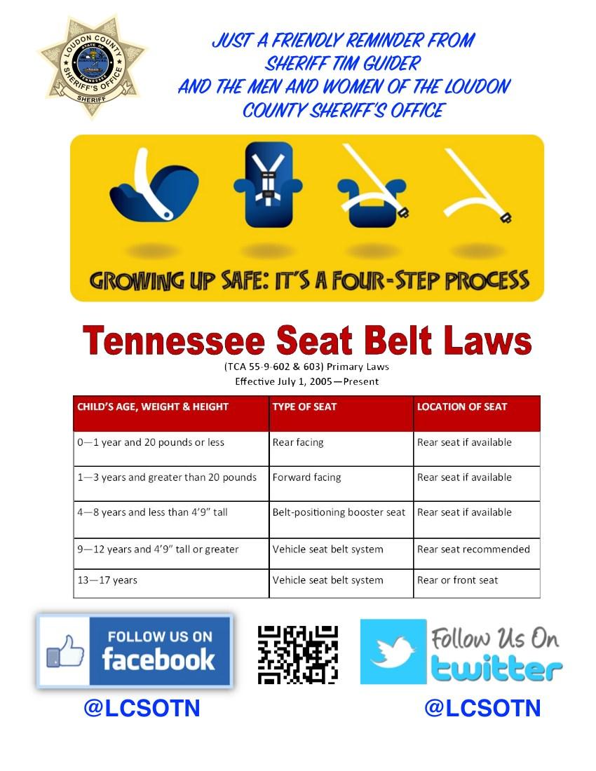 Car Seat Flyer