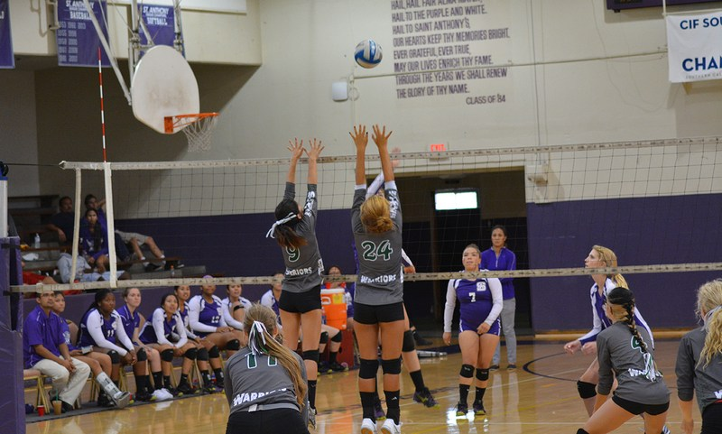 Girls Alumni Volleyball Game Featured Photo