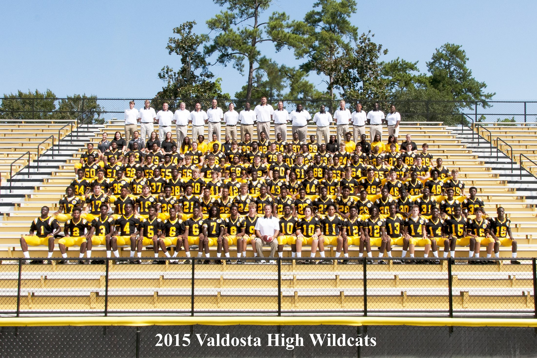 2017 Valdosta Wildcats