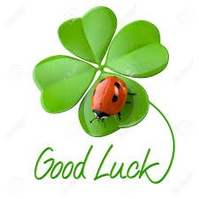 green 4 leaf clover with red ladybug with good luck written underneath