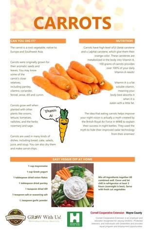 GROW Carrot Poster