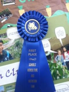 garden club first place ribbon.jpg
