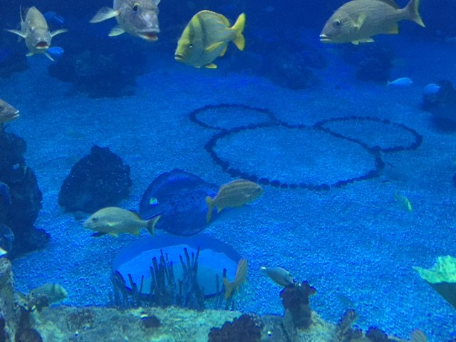 Hidden Mickey in The Living Seas exhibit