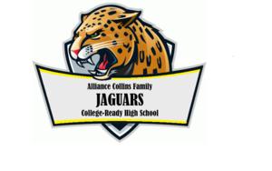 Jaguar Logo 2015-2016-2.png