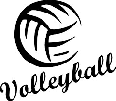 Girls' Varsity Volleyball Team in the Playoffs! Thumbnail Image