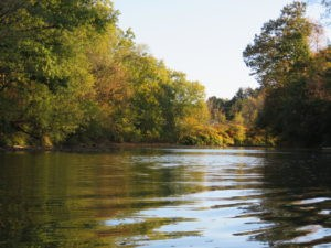 VOTE FOR PA RIVER OF THE YEAR- CONNOQUENESSING CREEK Featured Photo