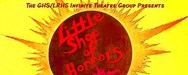 Drama Play - Little Shop of Horrors
