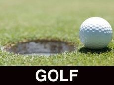 golf ball next to the hole