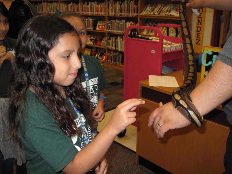 girl touching snake