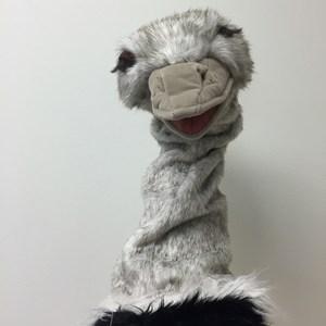 Otto Ostrich's Profile Photo