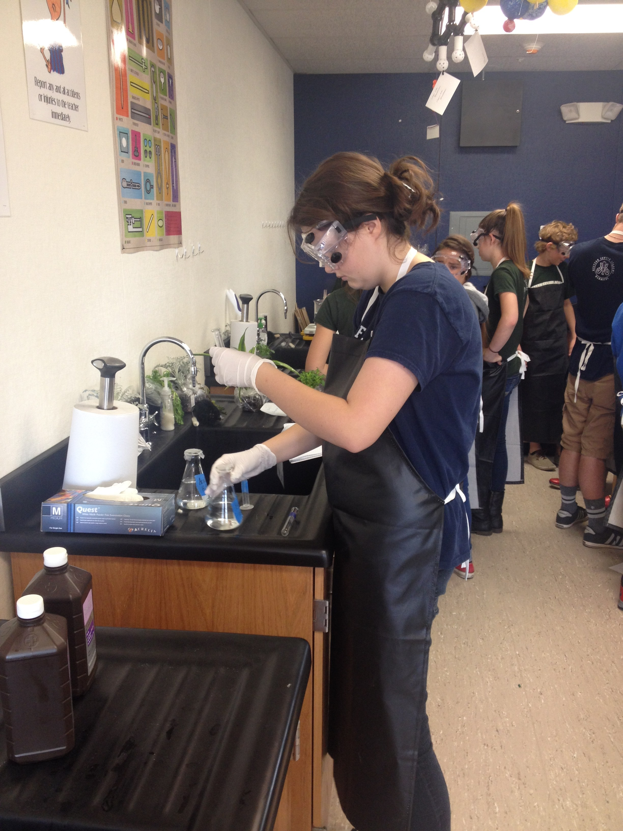 Freshmen studying enzyme activity