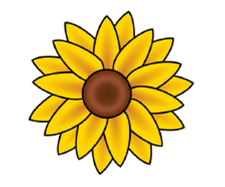 yellow flower plant sale.png