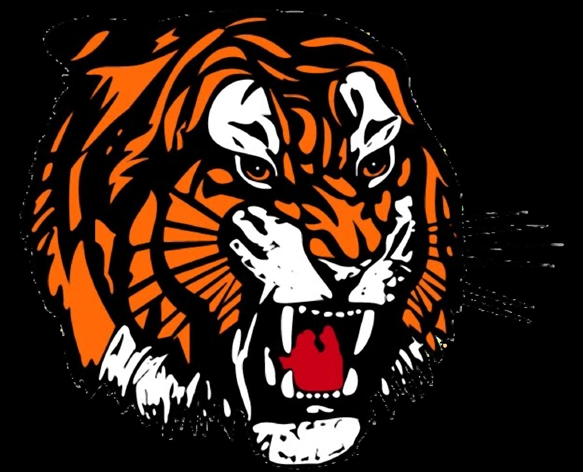 Tiger from clipart