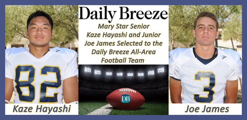 Two MSHS Football Players Honored Featured Photo
