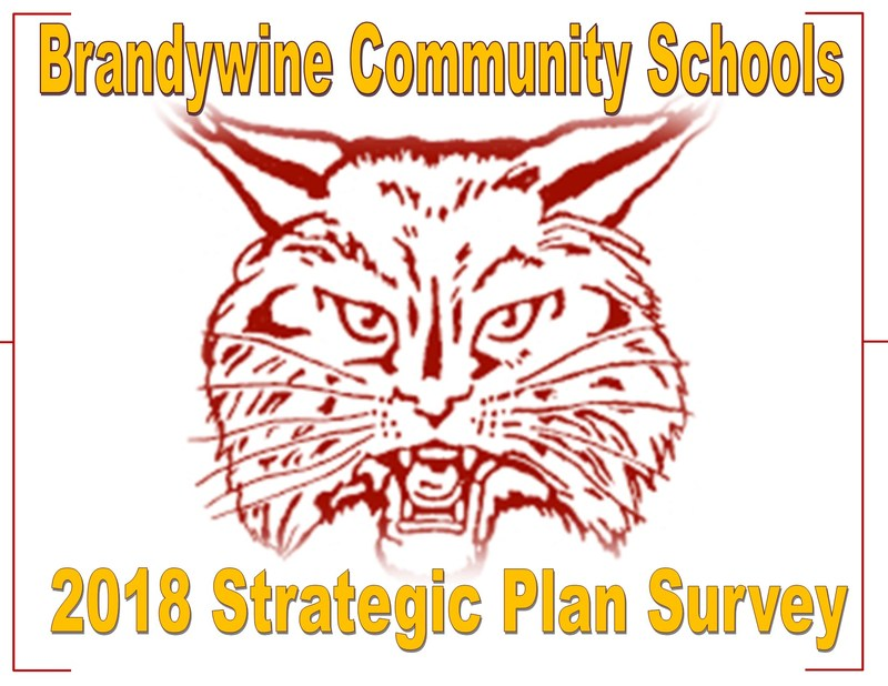 2018 Strategic Plan Survey Thumbnail Image