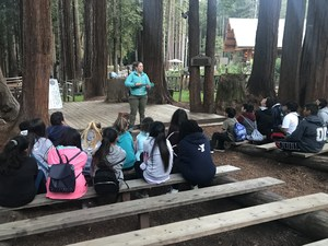 a group of students learns about nature, image 2