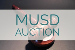 Auction Information
