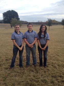 whs_ffa_junior_skills_team_second_place_at_area_5_lde_contest_112513.JPG