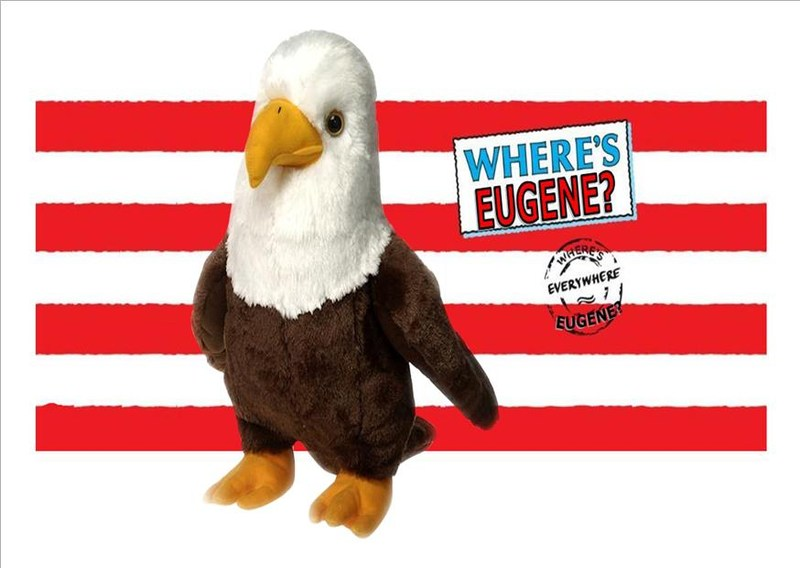Oh my - that Eugene is a busy Eagle! Thumbnail Image