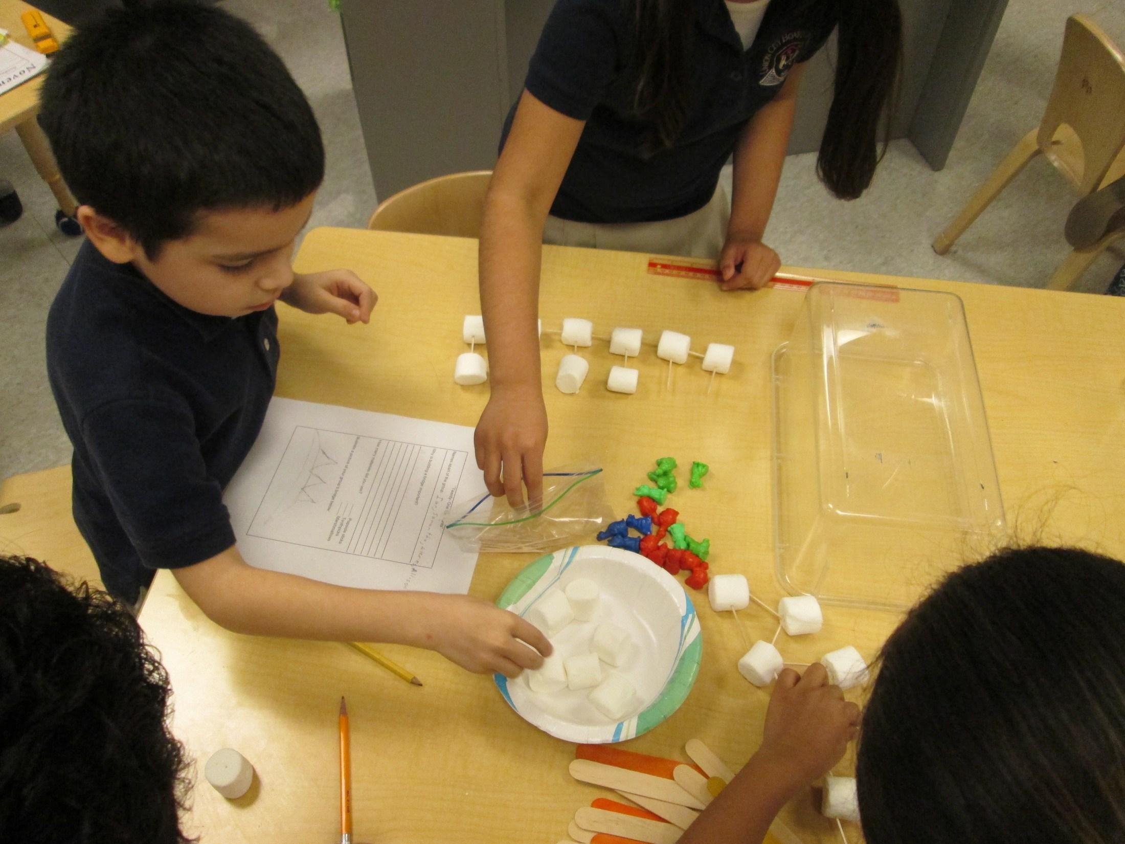 boy counting sugar cubes