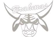 Watermark Brahma.jpg