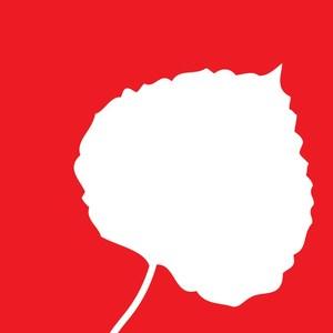 Aspen VP logo.jpg