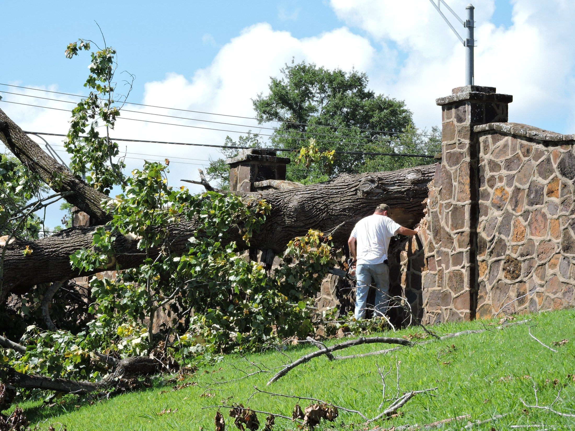 crew working to remove the fallen tree on the wall