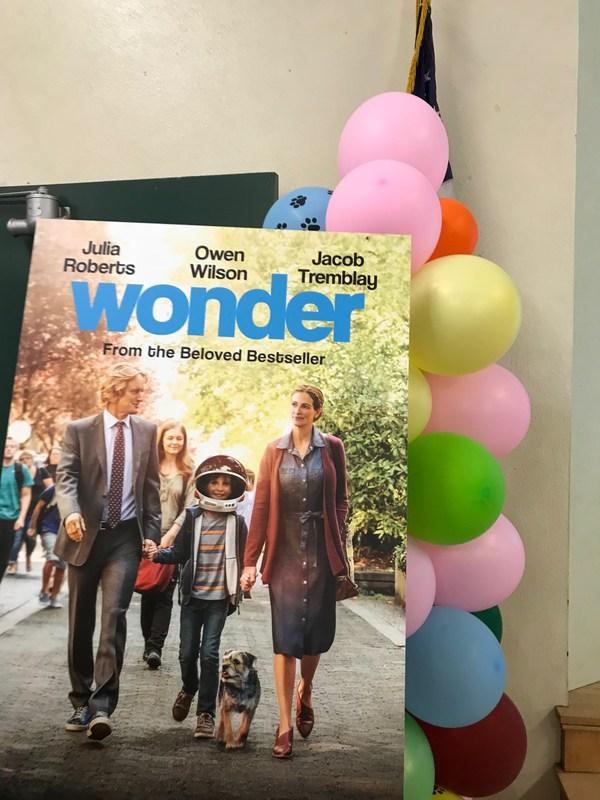 Wonder Thumbnail Image