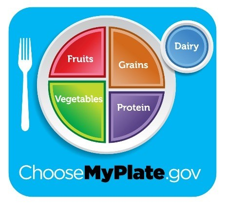 My Plate Logo