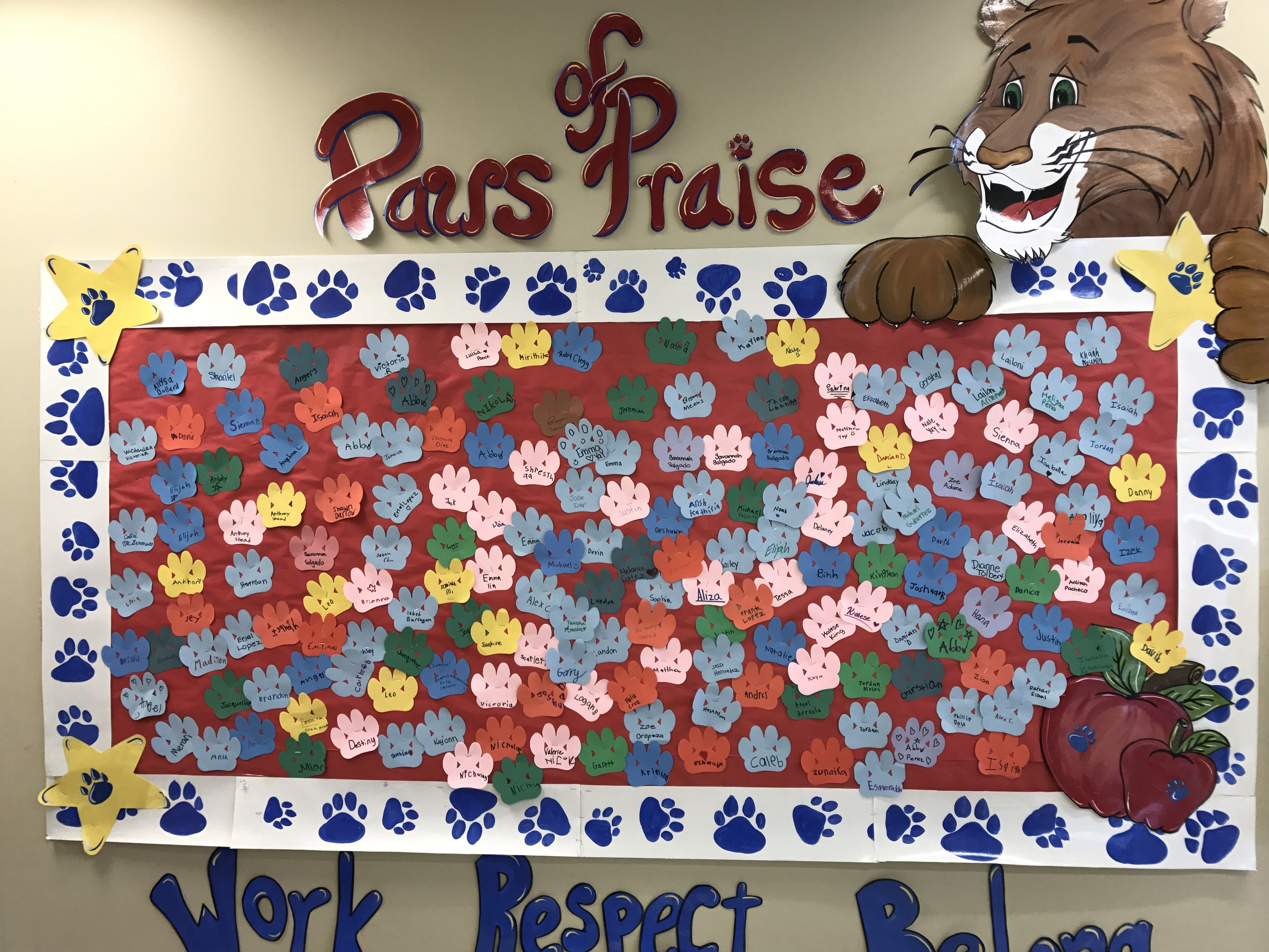 Corey Paws of Praise Wall