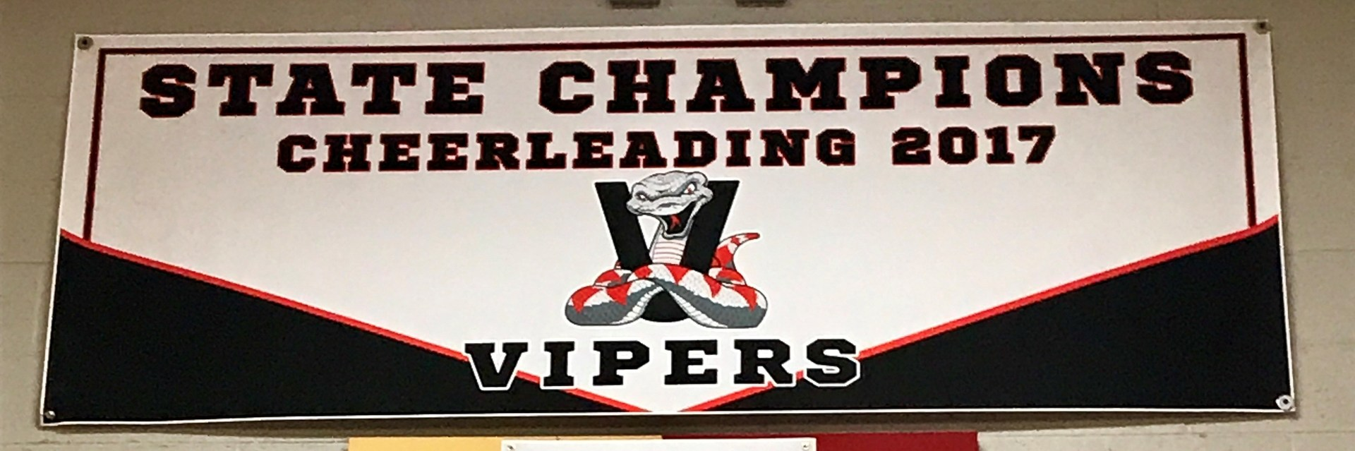 Cheer State Champs Banner