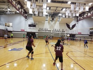 Picture showing two volleyball games in progress
