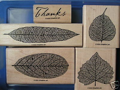 Leaves Stampin Up Stamps