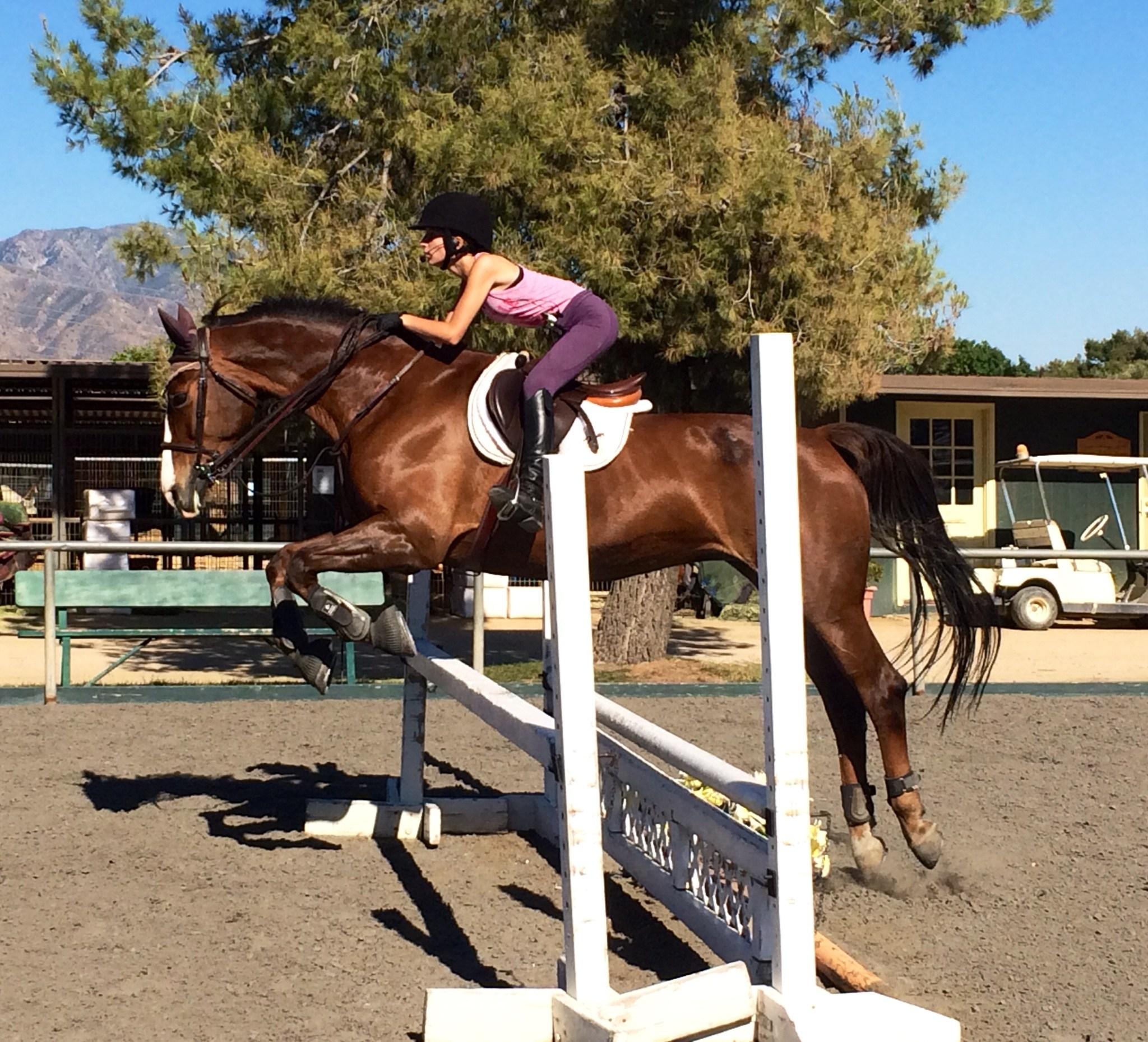 Bella jumping