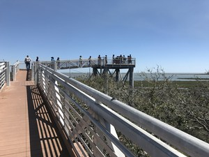students walk along a pier during their field trip to Aransas National Wildlife Refuge