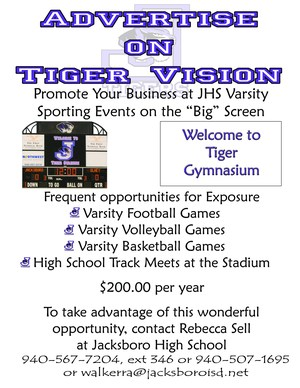 Tiger Vision Advert copy.jpg