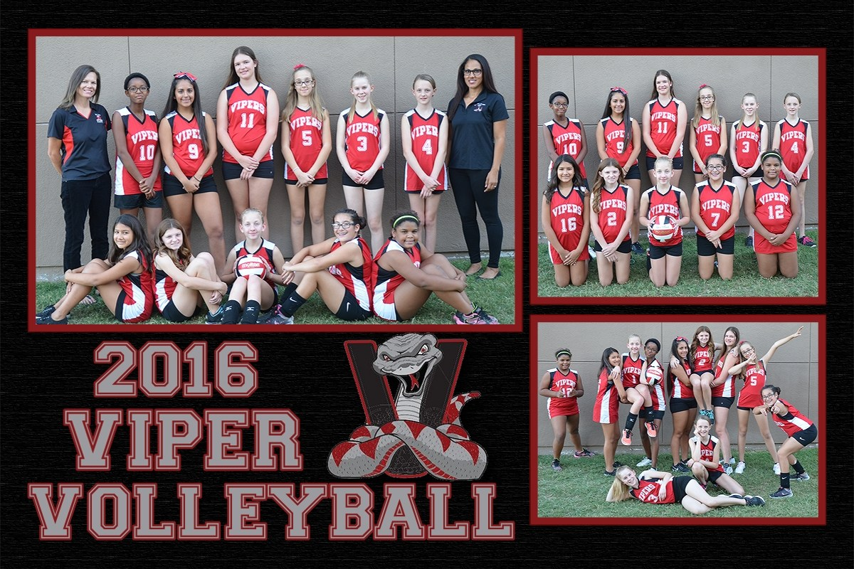 2016 Vipers Volleyball