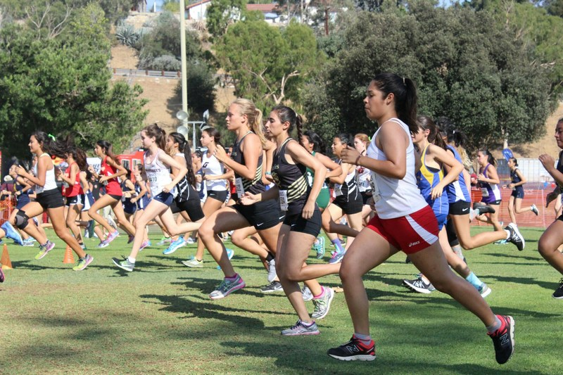 GV Cross Country starts season strong Featured Photo