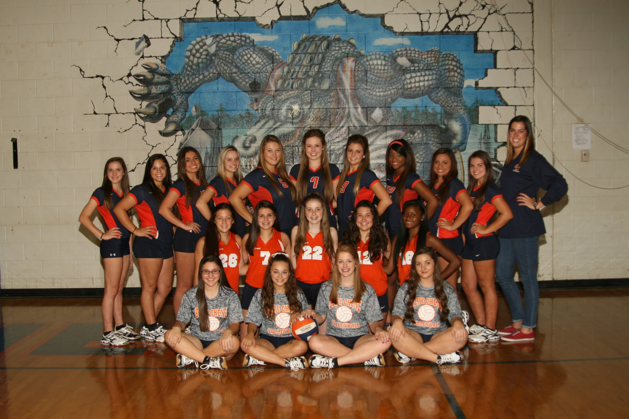 BCHS Volleyball Team - 2016-2017