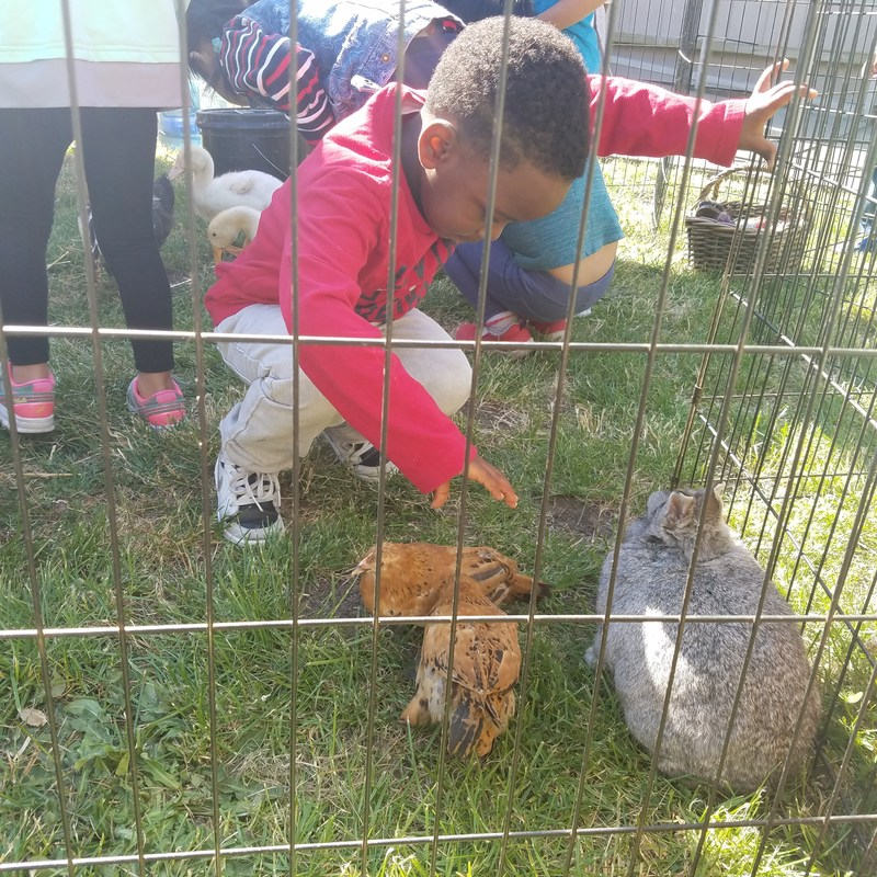 student with animal