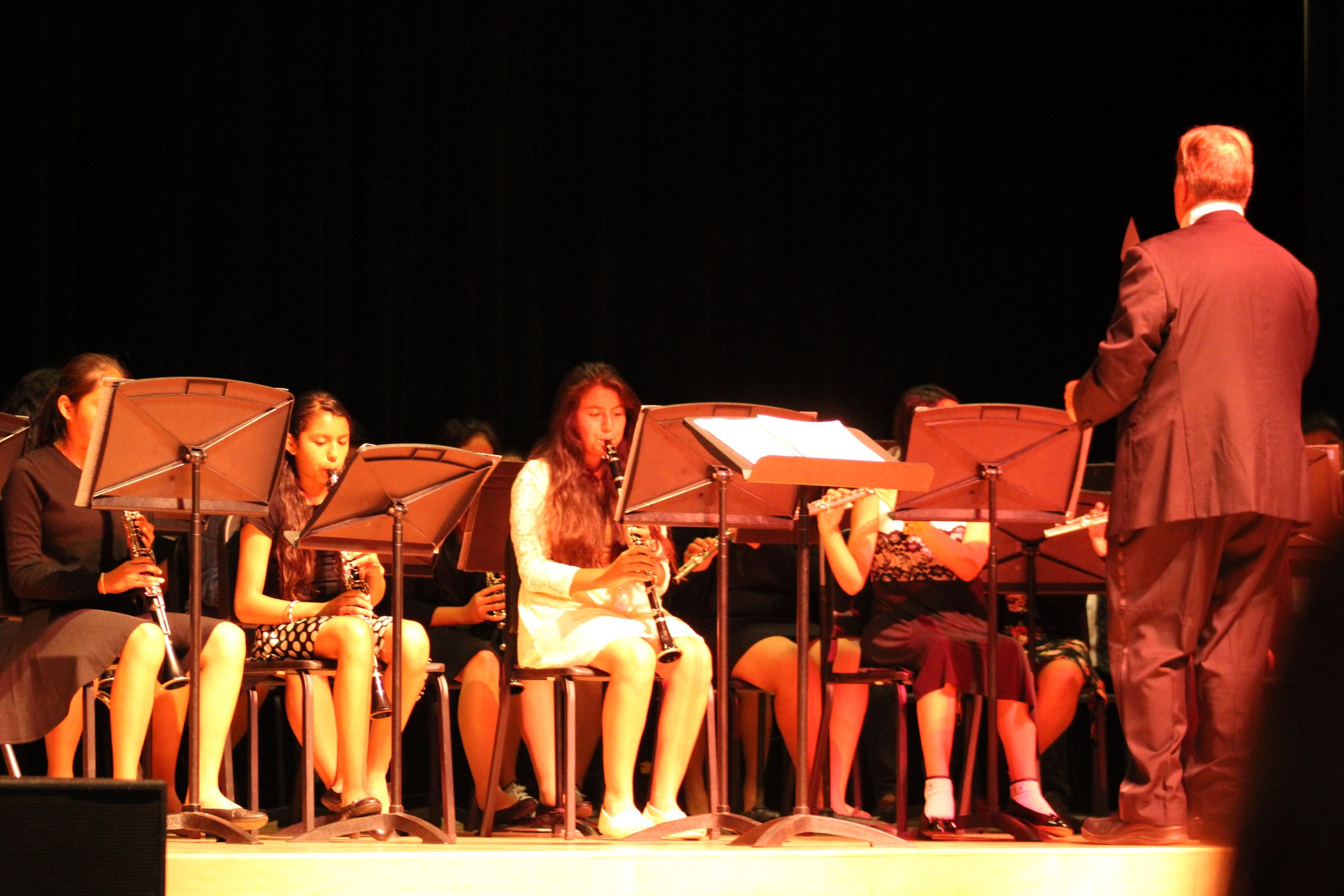 Violin Solos
