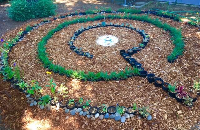 fisher labyrinth