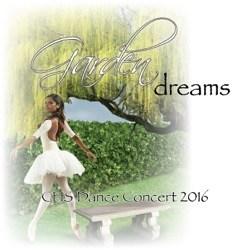 Dance Show 2016 Artwork Dreams