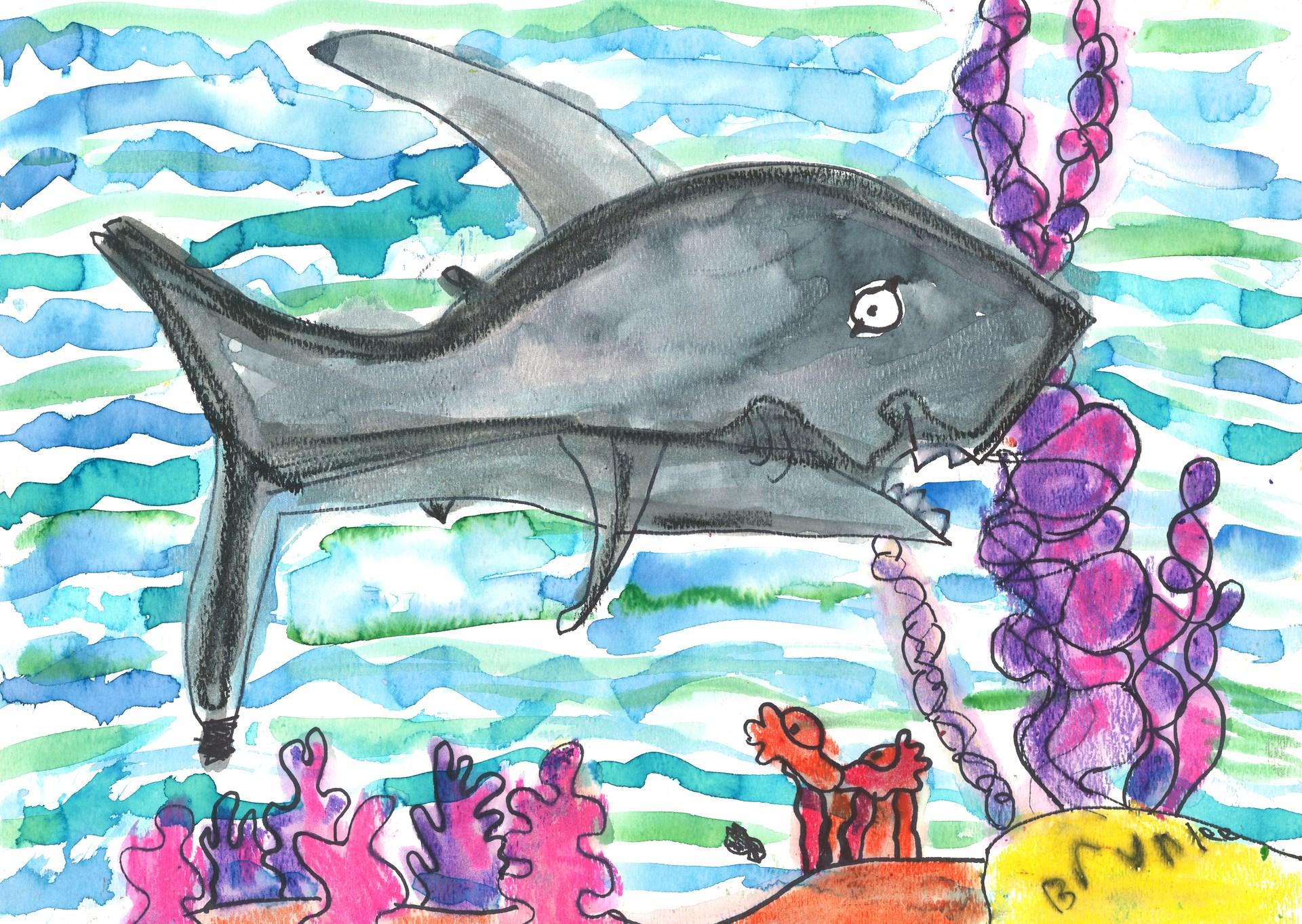 1st Grader fish and ocean